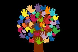 volunteers, hands, tree